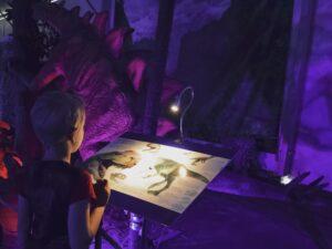 Boy on a dinosaur museum