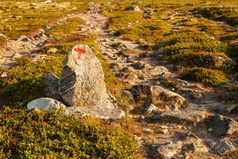 T sign turistforening mountain landscape Norway national park Do